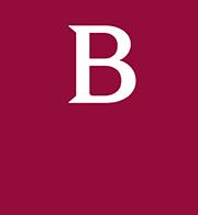 boldyn-logo-vin