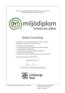 boldyn-consulting-diplom-2017